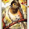Bird 04 ~ EvitaWorks