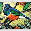 Bird 05 ~ EvitaWorks