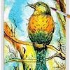 Bird 14 ~ EvitaWorks